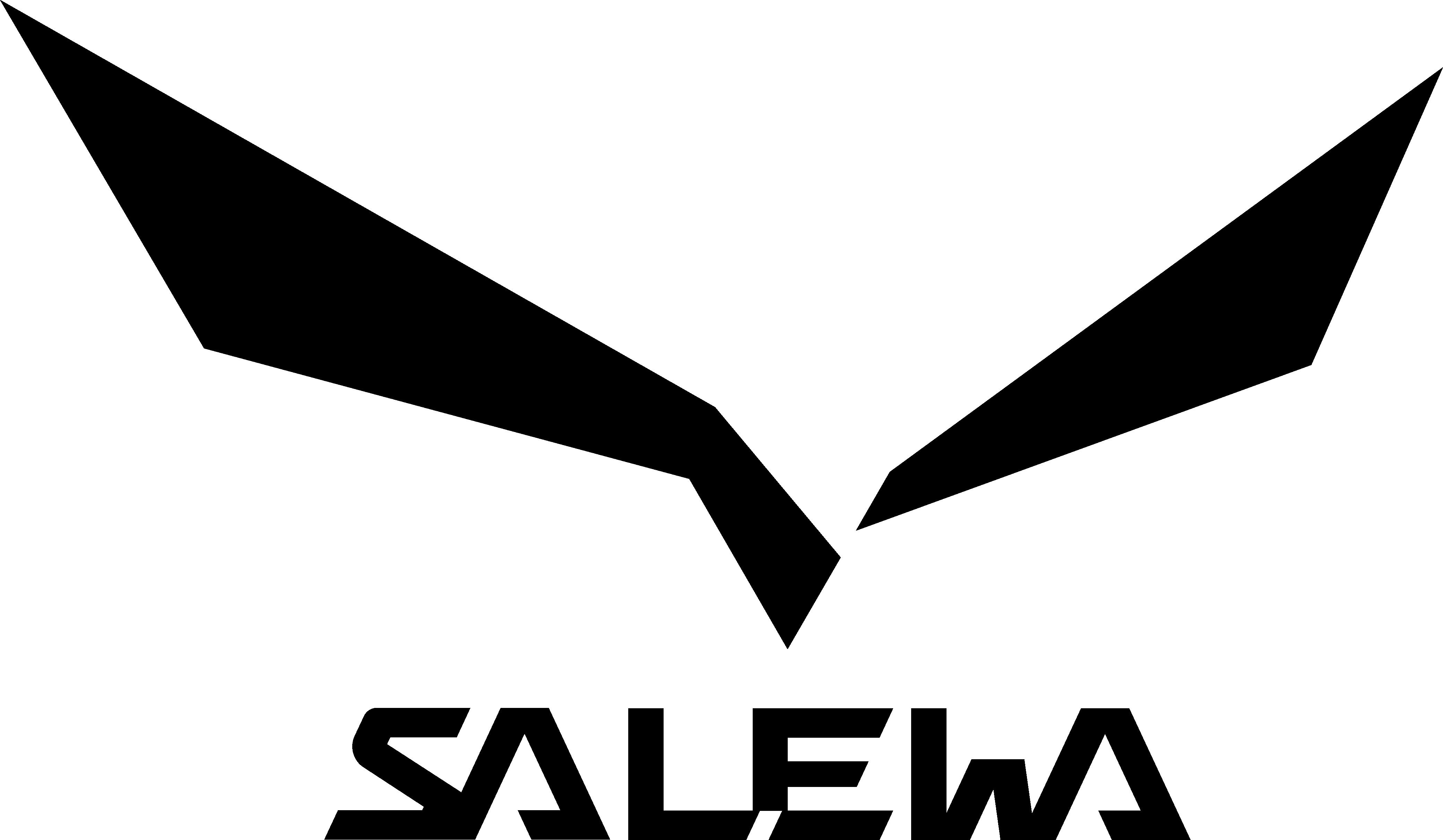 salewa-bergwerk-villanders-logo
